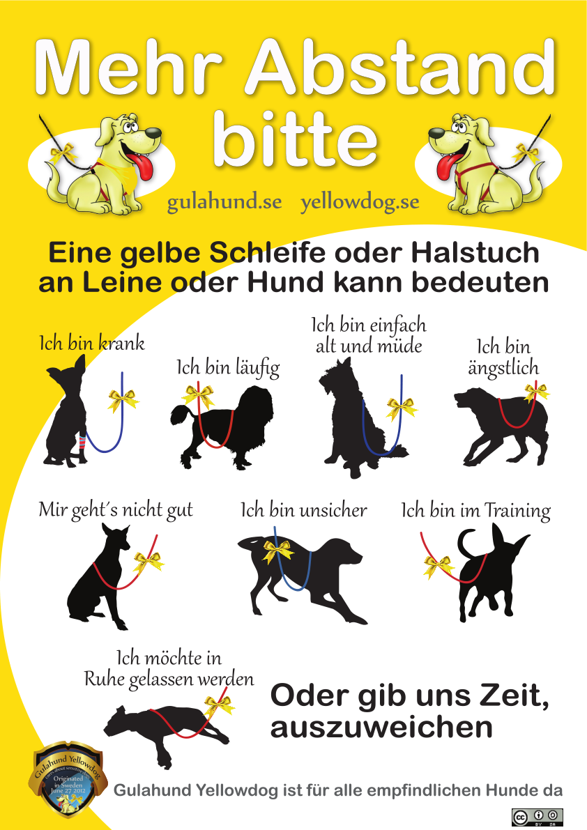 Gelber Hund Schweiz
